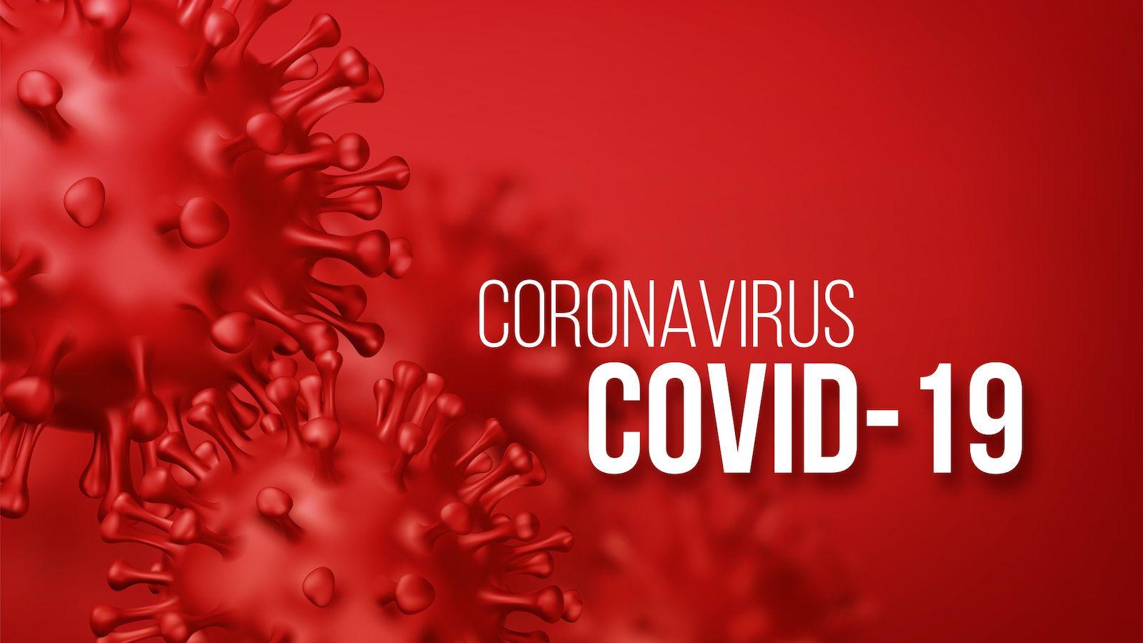 ウィルス 真実 コロナ の