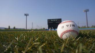 熊本の球児招き、福島で「もう一つの甲子園」